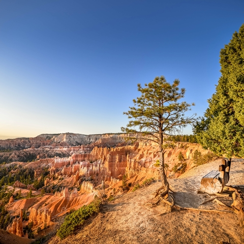 bryce canyon sunrise 001 480 480