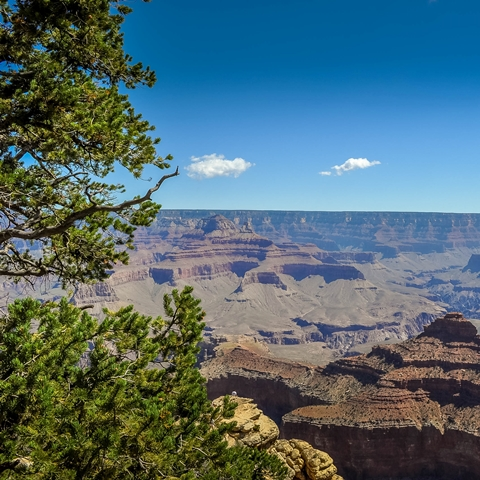 grand canyon south rim 001 480 480