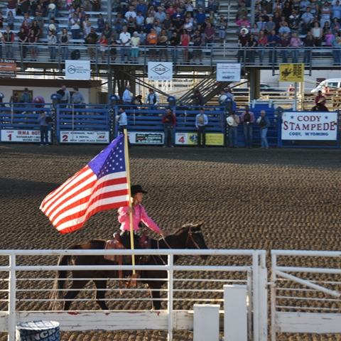cody stampede rodeo 480 480