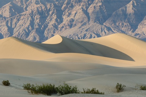 Death Valley National Park, Mesquite Flat Sand Dunes