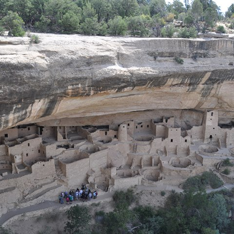 cliff palace 480 480