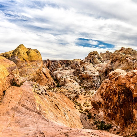 valley of fire white domes trail 480 480